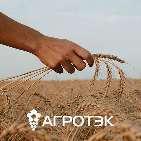 Сайт для группы сельскохозяйственных компаний